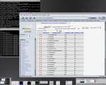custom_database_software
